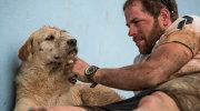 Arthur, el callejero adoptado en Ecuador por un Sueco