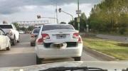 Indignante: automovilista lleva a un perro en el baúl del auto