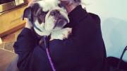 El perro de Kelly Osbourne la salva de ser atropellada